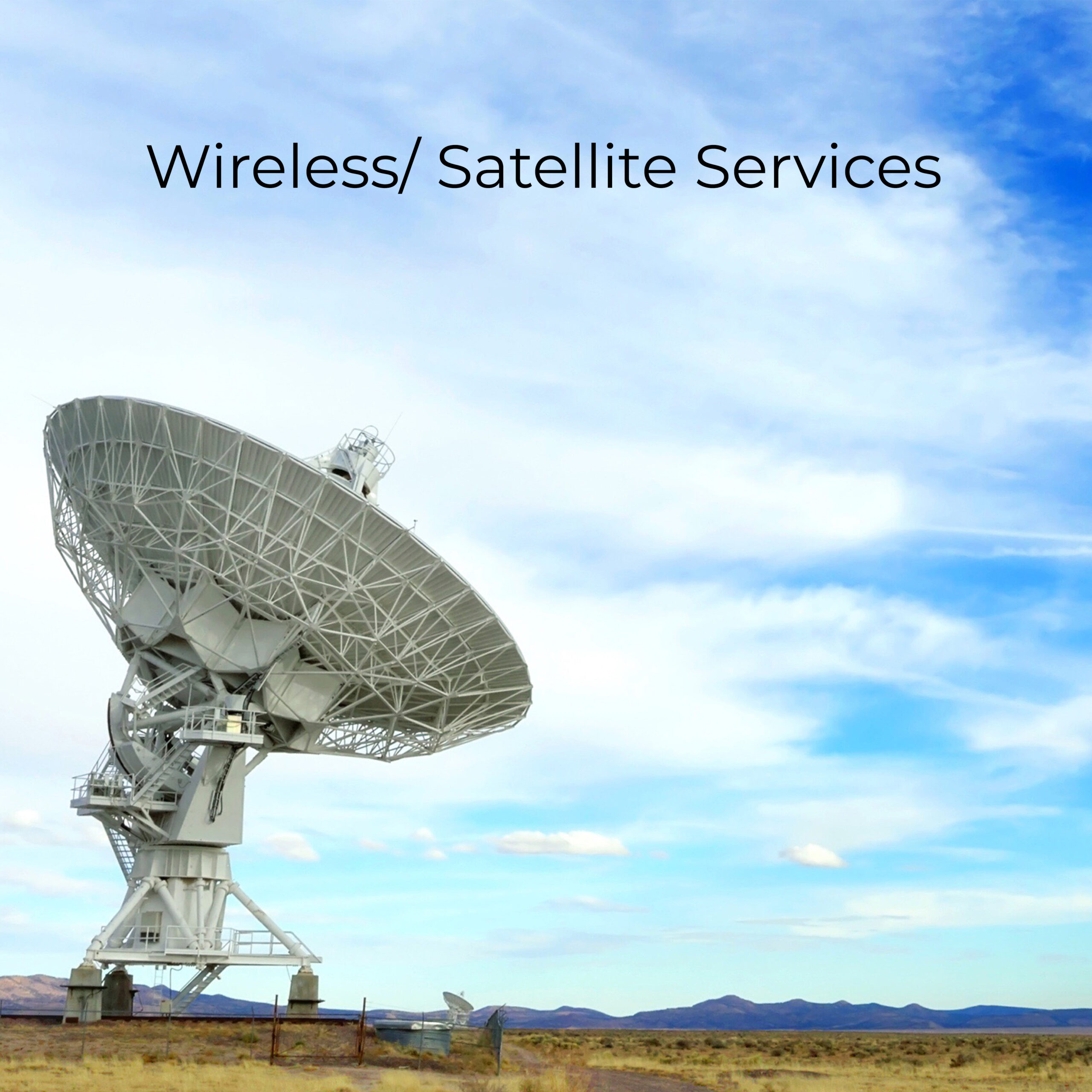 Satellite Services